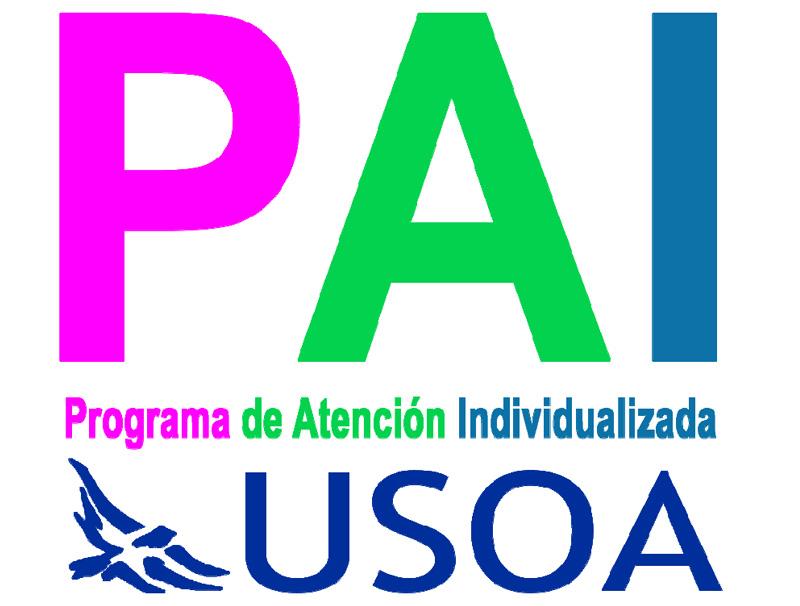 Programa de Atención Individualizada